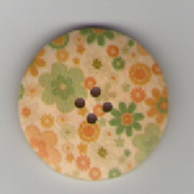 Painted Wooden 4 hole Button B2