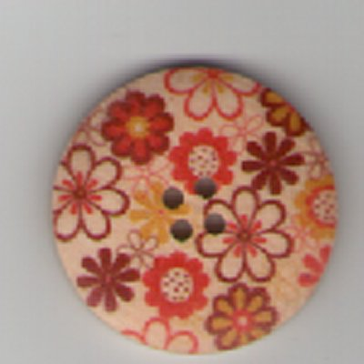 Painted Wooden 4 hole Button B6