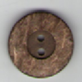 Coconut Shell Button B3