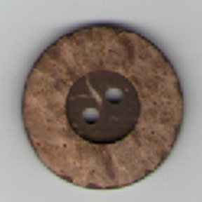 Coconut Shell Button B4