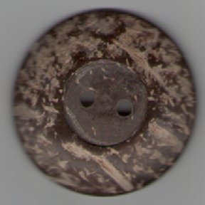 Coconut Shell Button B6